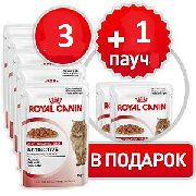 """""""АКЦИЯ ROYAL CANIN INSTINCTIVE 3+1(ЖЕЛЕ)"" - КОНСЕРВЫ ДЛЯ КОШЕК"
