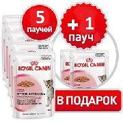 "ROYAL CANIN ""АКЦИЯ Kitten Instinctive 5+1(СОУС) -  КОНСЕРВЫ ДЛЯ КОТЯТ"