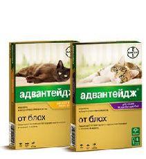 Bayer gl адвантейдж - капли для кошек от блох