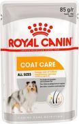 ROYAL CANIN ADULT COAT CARE (ПАШТЕТ) - КОНСЕРВЫ ДЛЯ СОБАК
