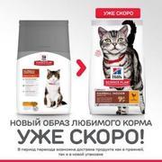 HILLS SP Feline Hairball Control Adult - СУХОЙ КОРМ ДЛЯ КОШЕК (1,5 кг)