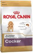 ROYAL CANIN  Cocker Junior - СУХОЙ КОРМ ДЛЯ СОБАК